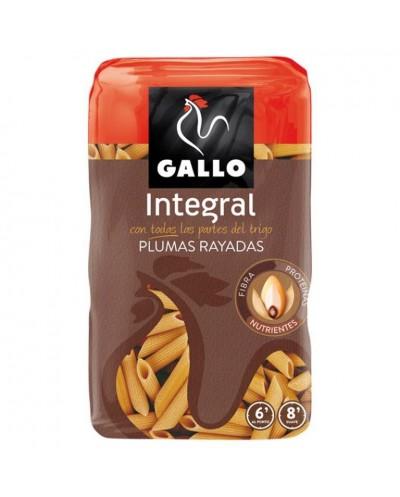 PLUMAS RAYADAS GALLO...